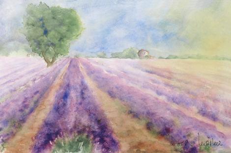 Valensole_Provence_32X48